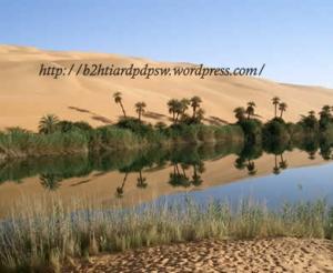 oase-di-padang-pasir copy